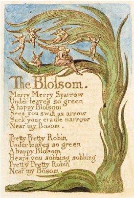 Blake_The_Blossom